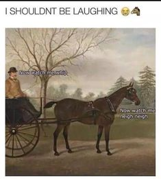 27 art history photos that are too funny for their own good 27 K . - 27 art history photos that are too funny for their own good 27 art history photos that are - Crazy Funny Memes, Funny Animal Memes, Funny Puns, Really Funny Memes, Stupid Funny Memes, Funny Relatable Memes, Funny Animals, Funny Stuff, Funny Humor