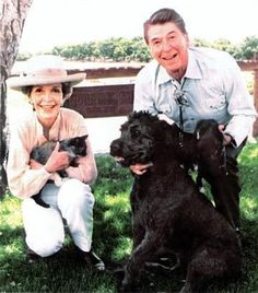 """Lucky"" the Bouvier des Flandres dog of the President and First Lady Ronald and Nancy Reagan with a couple kittens Nancy Reagan, Ronald Reagan, American Presidents, Us Presidents, Irish Setter, Best Dogs, Cute Dogs, Puppies, History"