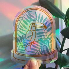 Rainbowmaker Tukan | HAPPY WINDOWS | Happy Whatever Unique Cards, Lunch Box, In This Moment, Happy, Instagram, Toco Toucan, Ser Feliz, Being Happy