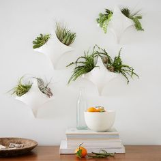 This Curved Diamond Tile Wall Planter adds life to your space when paired with succulents or air ferns. Made of bone china in a glossy white finish, arrange several together to create a hanging garden.