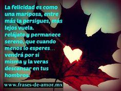 La felicidad es como una mariposa, entre más la persigues, más lejos vuela. fraces de amor- frases de amor con imagenes  http://frases-de-amor.mx/la-felicidad-es-como-una-mariposa/  #amor #frases #frasesdeamor #amor #quotes