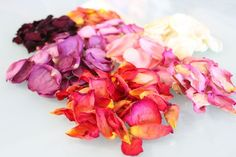 When you receive a bouquet of fresh roses, preserve their beauty and fragrance by drying the rose petals. Dried rose petals are perfect for making potpourri, but they can also be. Fresh Rose Petals, Fresh Flowers, Dried Flowers, Beautiful Flowers, Peony Flower, Flower Petals, How To Make Potpourri, Drying Roses, Drying Herbs