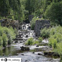 God søndag til deg og dine. Nyt dagen  #reiseliv #reisetips #reiseblogger #reiseråd  #Repost @frk_valberg (@get_repost)   Sootkanalen . . . #norsknatur #utno #forestgreen