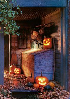 Fall decorating @ Season's of Seven Gates Farm.