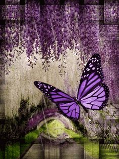 Easy Ideas for Utilizing Green Energy In Your daily life. There are so many different types of green energy, from solar to wind to water, that they are readily available for use in your own home. Purple Butterfly, Butterfly Flowers, Butterfly Cards, Beautiful Butterflies, Beautiful Flowers, Foto Gif, Gif Photo, Beautiful Gif, Beautiful Pictures