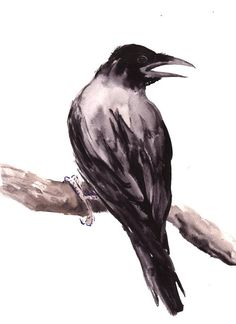 Crow Original watercolor painting 15 X 11 in raven by ORIGINALONLY, $63.00