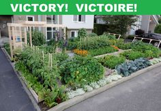 Victoire In Drummondville, Quebec: Front Yard Garden Gets To Stay : TreeHugger