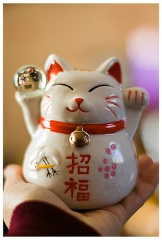 Maneki-Neko, for good luck!