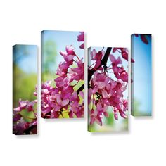 ArtWall Amber Berninger's 'Spring Redbud 4 Piece Gallery Wrapped Staggered Set