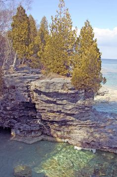 Door County Scenery     It always amazes me when I see trees growing out of rock.