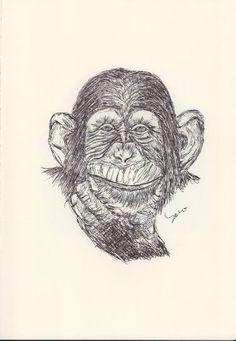 BALLPEN MONKEY 6 Ballpen, Ballpoint Pen, Monkeys, Illustrator, Saatchi Art, Skull, Drawings, Rompers, Monkey