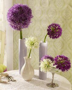 Allium: Mit Einzelbüten dekorieren