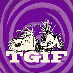 TGIF Snoopy all frazzled & ready for the weekend! Snoopy Friday, Happy Friday, Friday Weekend, Happy Weekend, Peanuts Cartoon, Peanuts Snoopy, Schulz Peanuts, Snoopy Love, Snoopy And Woodstock