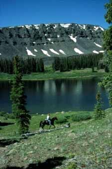 Powderhorn Lake Trail, Gunnison, CO....looked for this trailhead today....Terr wanted to show me where he once hiked in....in younger days....smiling sharing memories today