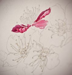 Eunike Nugroho: [TIPS] Cherry Blossom: The Fear of Masking Fluid