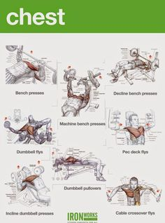 Chest Workouts to Gain Muscle Fast