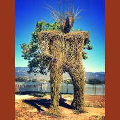 twig + willow branch sculpture at 2014 Ren Faire.