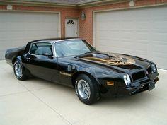 1976 Pontiac Trans Am .....dream car!