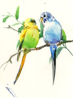 Budgies, Pet Artwork, bird painting blue yellow sky blue arwork wall art, original watercolor painting, 15 X 11 in by ORIGINALONLY on Etsy