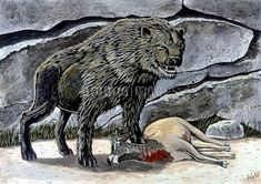 ShukerNature: HOW THE NANDI BEAR WAS CONCLUSIVELY IDENTIFIED AND... African Hunting Dog, Brown Hyena, African Mythology, Dangerous Animals, Honey Badger, Legendary Creature, Alien Creatures, Cryptozoology, Baboon