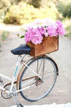 bicycle, carrier basket, pink peonies, white peonies, nature