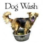 Dog Shampoo Recipes, really great list!