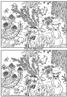 Australian animals find the difference puzzle. | Activity Village. Kids spot the difference and colouring in page for Australia day activities. http://www.activityvillage.co.uk/australian-animals-find-the-differences