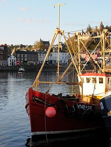 Fishing Boats in Evening Sunlight.  Link to info about Oban, Scotland.