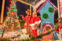 Whoville costumes and Whoville house
