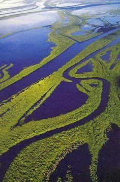 Amazon Rain Forest, Brazil Anavilhanas islands