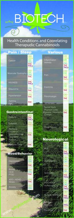 How Do Cannabinoids Effect The Human Body?