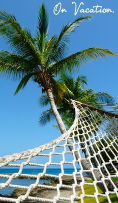 Vacation (n): an extended period of relaxation, often experienced on a hammock under a palm tree.