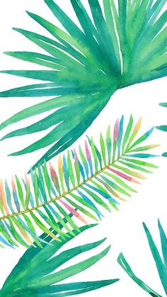 #Tropical palm plant vibes iphone wallpaper or background #watercolor #green
