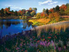 Chicago Botanic Garden, Evening Island in fall