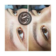 #LashesByZanLashAndBrowStudio #LashesByZan #HennaSpaEyebrows #LashLiftAndTint Brow Studio, Lash Lift, Henna, Eyebrows, Lashes, Spa, Eye Brows, Eyelashes, Hennas