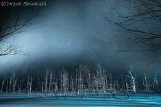 「白い池に粉雪舞う」 北海道美瑛町 「青い池」The Blue Pond That Snow Falls