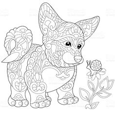 Pembroke Welsh Corgi Puppy Looking At A Snail On Flower Freehand