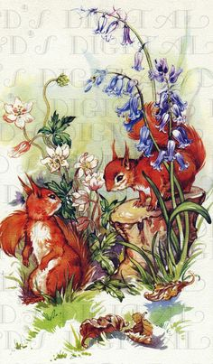 Wonderful illustration from an old childrens book.    Perfect for altered art, scrapbooking, card making, whatever your heart desires.