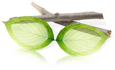 Biodegradable Sunglasses Made from Cotton: The Ace from Zeal Optics. #AMCequipped #eyewear