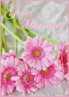 Good Morning Everyone!   This is The day that the Lord has made,  Let us Rejoice and be Glad in it!   Happy Friday, Love you all and God Bless!