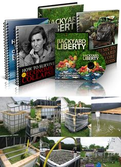 The program includes an instructional video guide that teaches you how to set up a complete homegrown system that can produce food in large quantities. While aquaponics is known to be very effective, most people don't know how to make the system cost-effectively. This guide, therefore, seeks to help you build the system without having to spend a lot of money. On top of that, you will find tips and strategies designed to ensure your survival and that of your loved ones during a crisis. Lots Of Money, Aquaponics, Self Help, Liberty, First Love, Survival, Home And Garden, Backyard, Teaching
