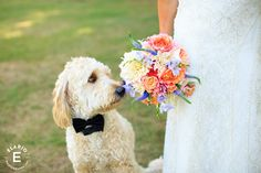 bridal bouquet, colorful bouquet, summer wedding, normanside country club- Elario Photography