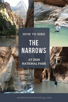 The Narrows in Zion National Park requires you to wade through the Virgin River, between canyon walls that are a thousand feet tall. The Narrows Zion, Narrows Zion National Park, Hiking The Narrows, Zion Park, Us National Parks, Day Hike, Travel Usa, Canada Travel, Travel Inspiration