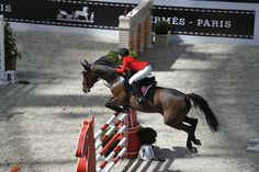 Red ribbon. #horse #sauthermes #showjumping #equestrian