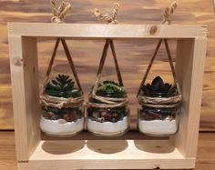 Handmade Succulent Frame – Home Trends 2020 Artificial Succulents, Succulents Garden, Succulent Plants, Jar Crafts, Wood Crafts, Succulent Frame, Deco Rose, Diy Hanging Shelves, Diy Holiday Gifts