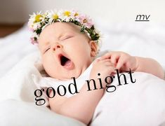 Baby Girl Congratulations Message, Baby Girl Messages, Baby Girl Wishes, Hearty Congratulations, Newborn Baby Quotes, New Baby Quotes, Names Girl, Baby Names, Good Night Cat