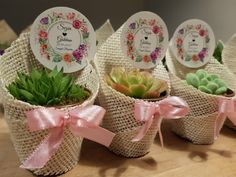 Cactus, Diy Wedding Gifts, Wedding Gloves, Unicorn Birthday Parties, Plant Decor, Succulents, Baby Shower, Table Decorations, Bride