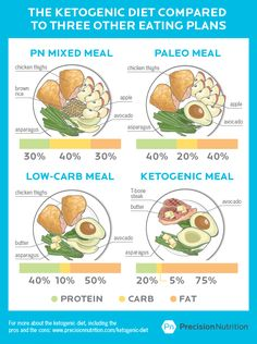 Ketogenic Diet: How it Compares, How to Use it and What to Expect