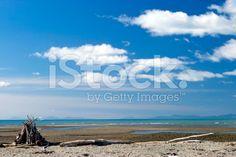 Driftwood Cairn, Motueka Spit, Tasman, New Zealand royalty-free stock photo Beach Photos, Image Now, Driftwood, New Zealand, Royalty Free Stock Photos, Water, Outdoor, Gripe Water, Outdoors