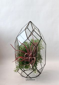 Geometric Decor. Stained Glass terrarium Container. Wedding Table Box. Orchid  Geometric Terrarium. Terrarium Container. Glass Terrarium